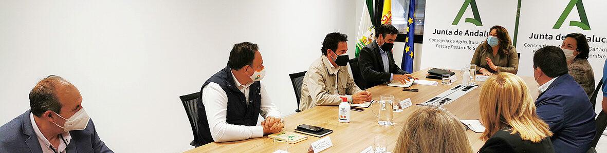 UPA Andalucía traslada a la consejera de Agricultura su apuesta por la agricultura familiar y profesional