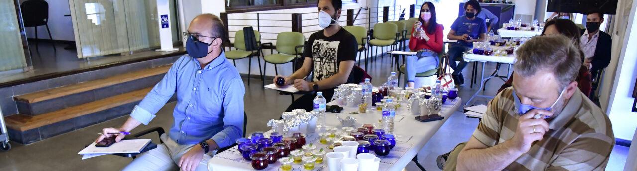Aforo completo en el curso de iniciación a la cata de aceite de oliva virgen «Cultura y sabor» de Olivar y Aceite
