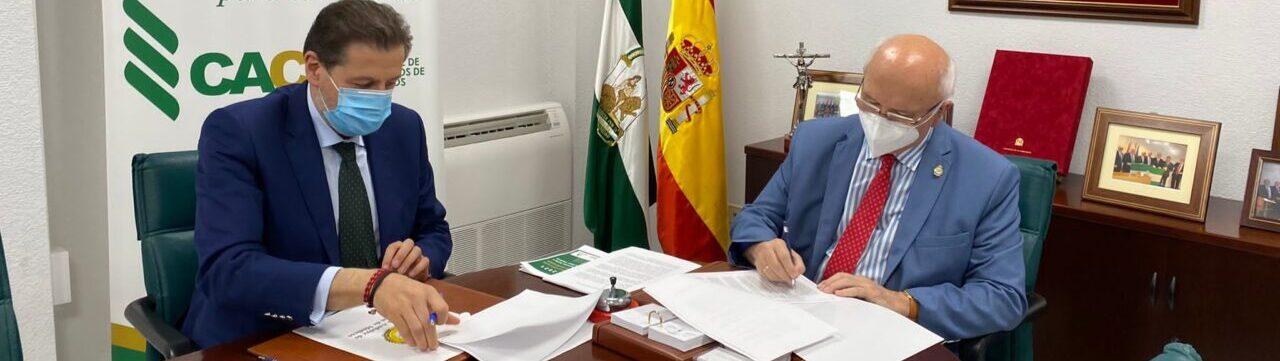La Caja Rural de Jaén y el Consejo Andaluz de Colegios de Médicos firman un convenio de colaboración con el que patrocinará el trabajo que trate sobre los beneficios en la salud del aceite de oliva