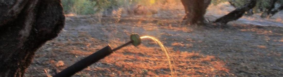 El delegado de Agricultura demanda que se amplíe la superficie regable de la presa de Siles