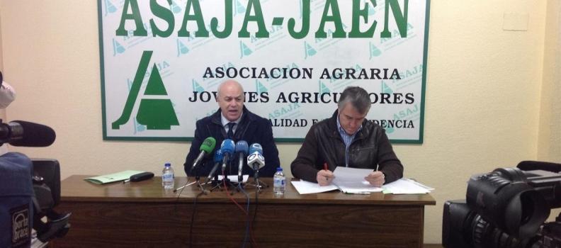 ASAJA-Jaén califica 2013 de «año decisivo para la agricultura»