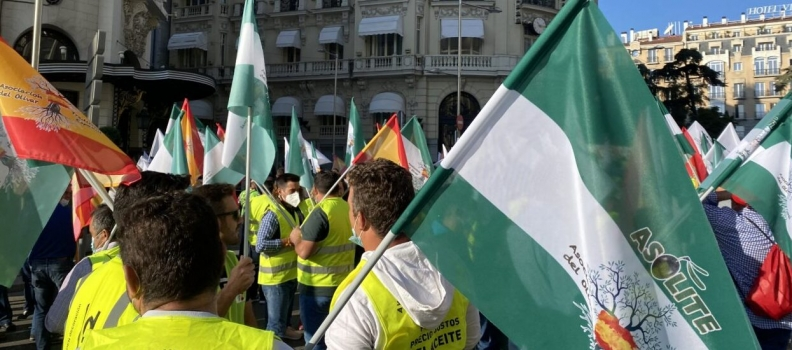 Agricultores convocados por Asolite exigen en Madrid agua y una PAC justa para el olivar tradicional