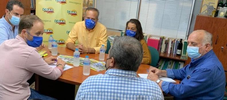 El PP de Jaén se reúne con Asaja y COAG para abordar asuntos relacionados con el olivar y el agua
