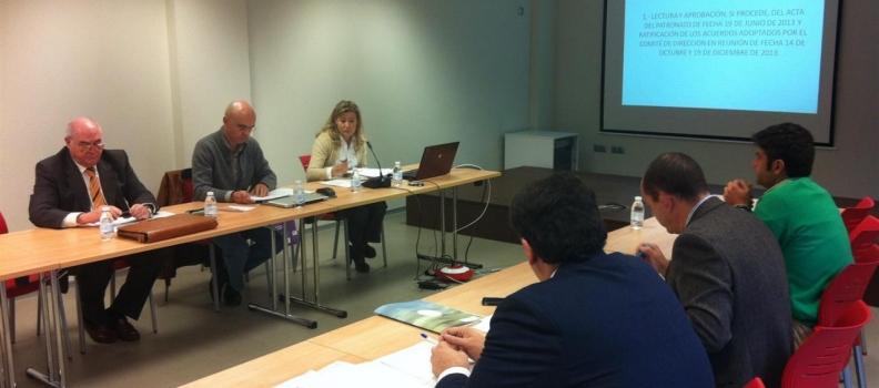 El Patronato de Citoliva aprueba el plan de actuación que promoverá la mejora de la calidad del aceite de oliva a través de la I+D+i