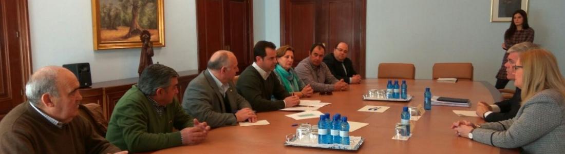 COAG-Jaén cifra en 400 millones de euros las pérdidas por la sequía en el sector oleícola de Jaén en esta campaña