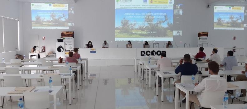 El Grupo Operativo Salud Olivar expone en Dcoop estrategias para controlar enfermedades del olivo