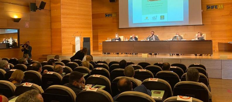 Presentada la segunda edición del Informe Anual de Coyuntura del Sector Oleícola, que contribuye al conocimiento y análisis de su evolución
