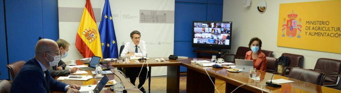 El Ministerio de Agricultura y las comunidades autónomas hacen balance de los trabajos preparatorios del Plan Estratégico de la PAC