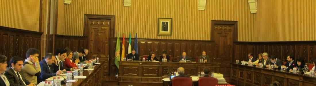 El pleno de la Diputación de Jaén solicita a la RAE que cambie la denominación de los aceites de oliva