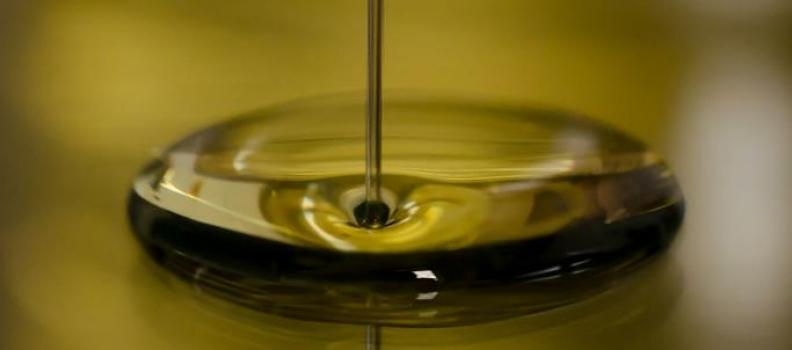 El Ministerio de Agricultura pone en servicio el sistema informatizado para registrar los movimientos de aceite de oliva
