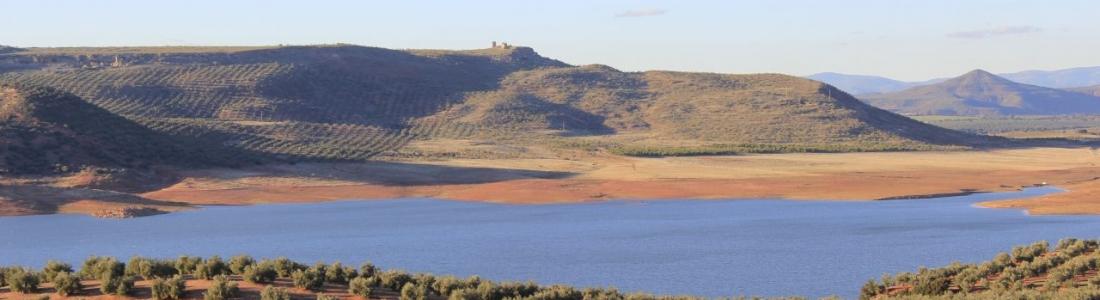 COAG-Jaén solicita una rebaja del módulo fiscal ante el estado de sequía