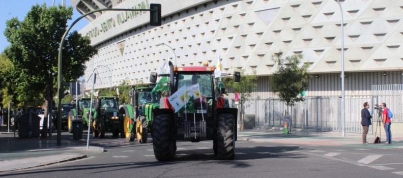 Caravana de vehículos en Sevilla para reclamar una PAC justa para los agricultores y los ganaderos de Andalucía